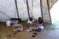 Public Education-excavation.jpg